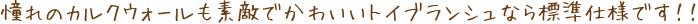 憧れのカルクウォールも素敵でかわいいトイブランシュなら標準仕様です!!